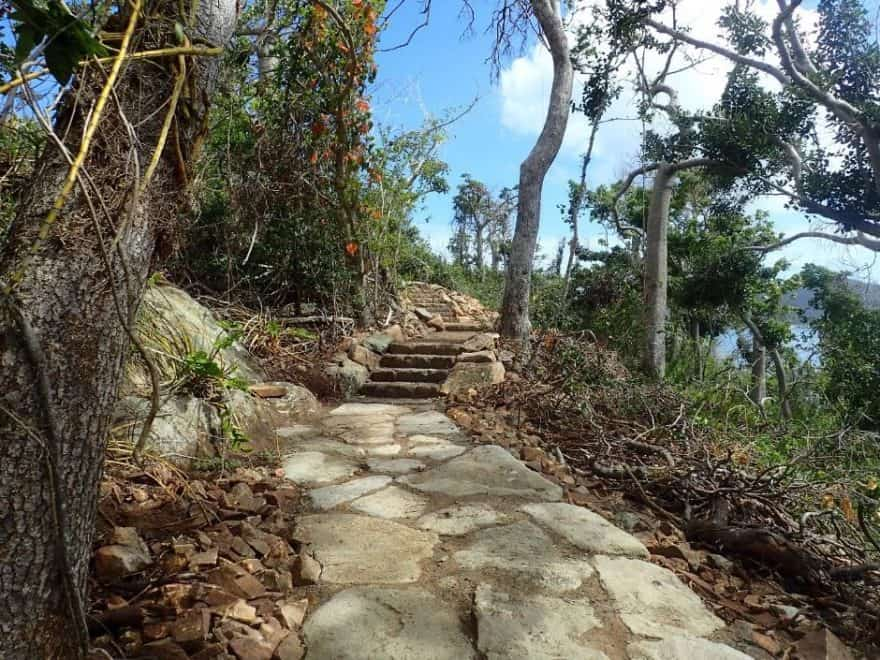 Langford Island walking track lookout in the Whitsunday Islands
