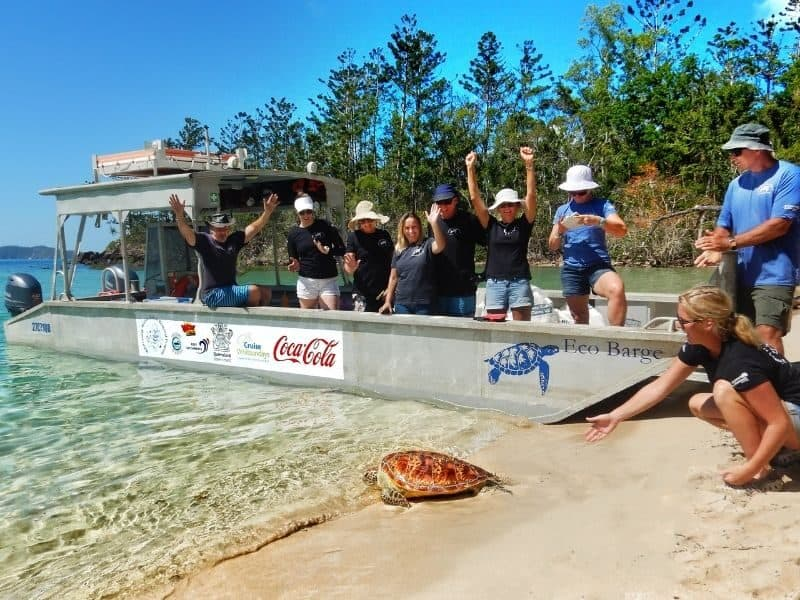 Eco Barge Clean Seas releasing a sea turtle in the Whitsundays from a beach with their private marine debris barge
